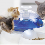 Cat Product Guide to cat water fountains. The CatIt Fresh and Clear drinking fountain