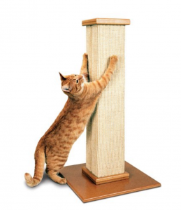 Best Cat Scratching Posts - the Ultimate cat scratching post
