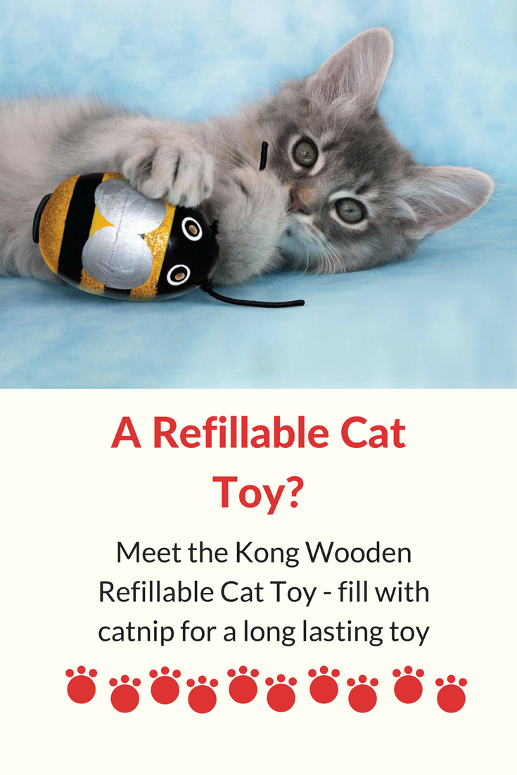 Kong wooden refillable cat toy - fill with catnip for longevity