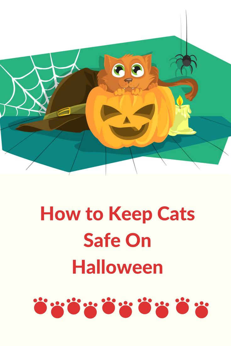 how to keep cats safe on halloween. Halloween is fun for us humans but our cats can find it stressful and dangerous