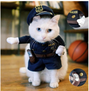 cat halloween costumes policeman & Cat Halloween Costumes - The Cutest Pet Costumes - Cool Stuff for Cats
