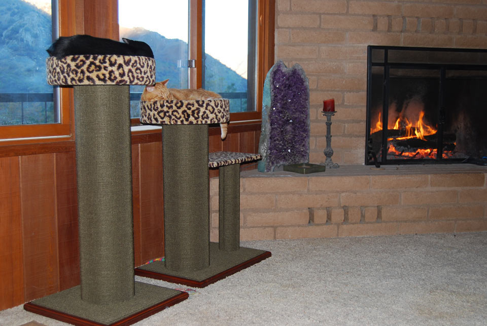 purrfect post new sophisticat color for scratching posts with leopard carpet
