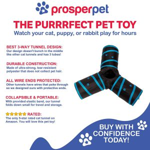 prosper pet cat crinkle tunnel the benefits of this interactive cat toy