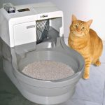 Cat Product Guide to Automatic Litter Boxes - the Cat Genie Self washing and self flushing cat box