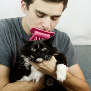Licki Brush. Lick your cat for a different bonding experience