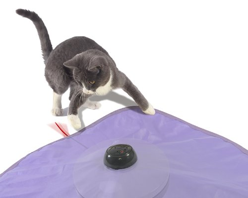SmartyKat Hot Pursuit Cat Toy