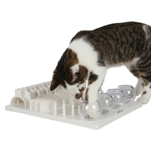 Trixie ccat 5 in 1 activity center