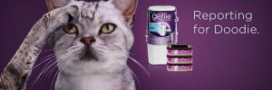 litter genie plus and cartridge cat litter disposal system