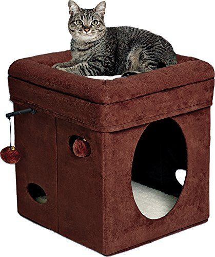 Midwest homes curious cat cube