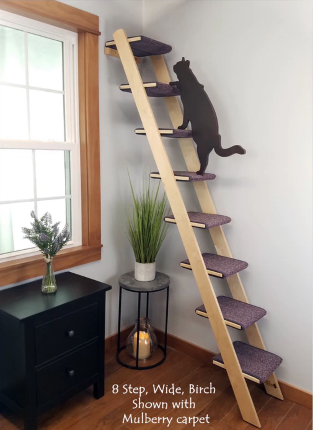 tall cat ladder on kickstarter