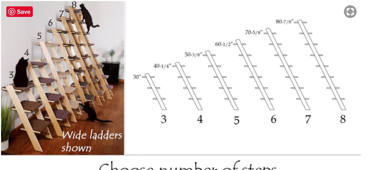 cat ladder sizes