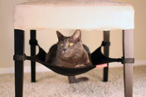 Cat Crib a Hammock type cat bed for your pet